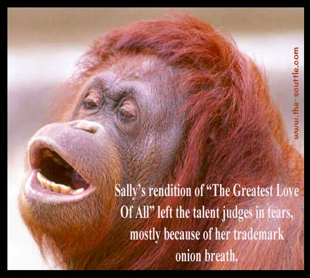 "Sally the Orangutan sings her rendition of ""The Greatest Love of All""."